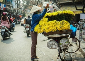 Freelance Content Writer at Viet Center Tourist